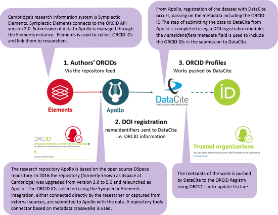 Workflow showing ORCID ID and dataset information flowing through Symplectic Elements, Apollo, DataCite and the ORCID registry